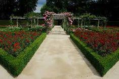 botanical garden– Google Поиск Botanical Gardens, Sidewalk, Google, Side Walkway, Walkway, Walkways, Pavement