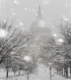 Snow falls on the grounds of the U.S. Capitol as the February 2010 blizzard blankets Washington, D.C.