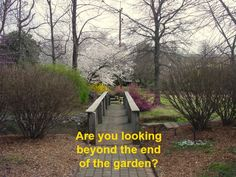 Are you looking beyond the end of the garden? SMEs and their search for growth