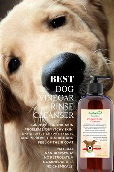 This Vinegar Rinse Is Great For Dogs With Skin Conditions Using this apple cider vinegar rinse on your furry friend may be one of the best things you can do to improve chronic skin problems, dry itchy skin, dandruff, help with pests and improve the shine and feel of their coat. Dogs with red, irritated dry itchy skin caused by allergies and other conditions can get soothing relief.