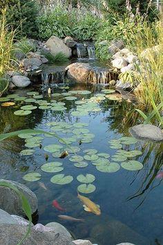 lily pads and the koi pond design teich, Stunning Garden Pond Waterfall Design Ideas - TRENDECORA Backyard Water Feature, Ponds Backyard, Garden Ponds, Backyard Waterfalls, Design Fonte, Garden Pond Design, Garden Art, Pond Waterfall, Natural Pond