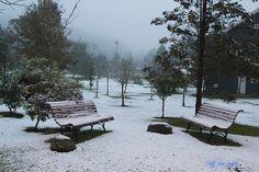 Deixo-lhes imagens da última neve de 2013 e o arrebatamento do espetáculo, tudo…