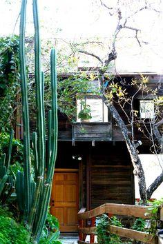 Free People: Charlie Hilltops LA cabin