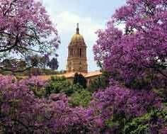 Pretoria, city of jacarandas - SouthAfrica.info