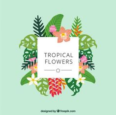 Cute hand drawn tropical flowers Free Vector