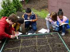 Blog about a new school garden