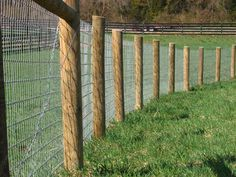wire fencing   View the entire photo gallery for Maryland Horse Fencing