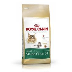 20kg (2x10kg) Royal Canin Maine Coon Cat 31