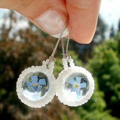 forget mi not earrings terrarium flower natural by SparkleCingari