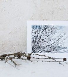 LuciaMphoto15_WinterWhiteness_094
