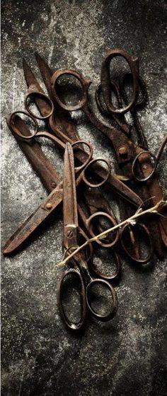 Ciseaux anciens rusty old scissors Rust Never Sleeps, Rust In Peace, Retro, Rusty Metal, Look Vintage, Wabi Sabi, Vintage Sewing, Vintage Antiques, Old Things