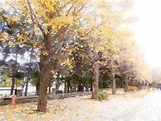 """""""Nakajima Park""""  Sapporo Hokkaido Japan [2012.11.16]"""