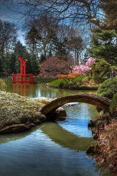 Japanese Hill and Pond Garden with drum bridge in Brooklyn Botanic Garden
