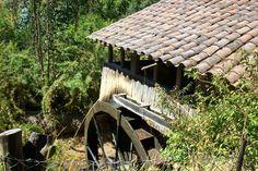 Molino de agua desde 1904 en Ciruelos, Pichilemu.