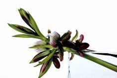 AZUMA MAKOTO -Japanese flower artist-