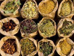 30 hierbas más populares de la medicina natural.