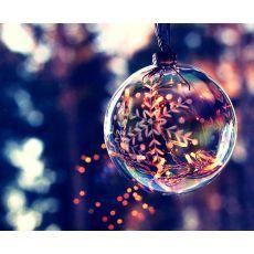 Forfait demi-journée Noël 2016