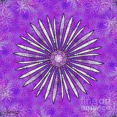 White Daisy on Pink by Caroline Street Daisy Flowers, Mandala Art, Fine Art America, Purple, Pink, Digital Art, Instagram Images, Greeting Cards, Design Inspiration