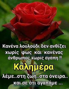 Good Morning, Facebook, Random, Buen Dia, Bonjour, Good Morning Wishes, Casual