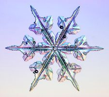 Our first snow came early this year! Put a blue background on your bulletin board and then add a layer of white for snow. Nail Designs Pictures, Gel Nail Designs, Snowflake Photography, Snowflake Pictures, Snow Flake Tattoo, Snow Tattoo, Snow Flower, Crochet Snowflakes, Real Snowflakes