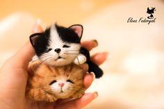 Needle Felted Cute Little Sleeping Kittens (MADE TO ORDER) by KittenBlackUA on Etsy https://www.etsy.com/listing/209295204/needle-felted-cute-little-sleeping