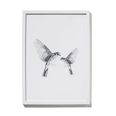 Framed Watercolour Print Hummingbird