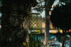 House Dublin Wedding - Mackenzie and Derby — Simple Tapestry Simple Tapestry, Dublin Restaurants, Ireland Destinations, Dublin City, Dublin Ireland, Northern Ireland, Bird Feeders, Wedding Photography, Weddings