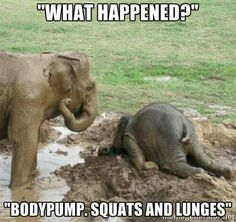 BodyPump squats lunges leg day