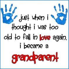Grandparent grandma sayings, funny grandma quotes, nanny quotes, papa quote Nanny Quotes, Family Quotes, Me Quotes, Papa Quotes, Mommy Quotes, Qoutes, Grandson Quotes, Quotes About Grandchildren, Grandkids Quotes