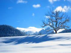 Rußbach im Winter Hallstatt, Austria, Snow, Outdoor, Mountains, Environment, Hiking, Outdoors, Outdoor Games