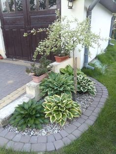 how to do it yourself landscaping