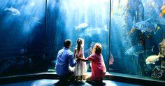 3 cimientos de una herencia perdurable para tus hijos