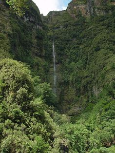 Caldeirão Verde by Madeira Islands Tourism, via Flickr, Madeira, Portugal