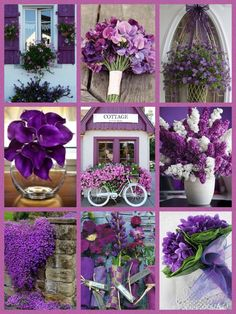 ☮ * ° ♥ ˚ℒℴѵℯ cjf Word Collage, Color Collage, Purple Lilac, Shades Of Purple, Beautiful Collage, Beautiful Flowers, Photo Wall Hanging, Provence Lavender, Origami