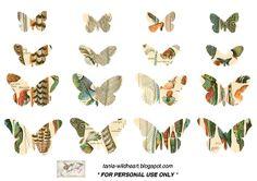 Wild@heart: Friday freebie - butterflies