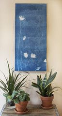 Cyanotype 2013 Calendars - $65