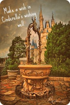 """""""Make a wish in Cinderella's wishing well""""... I didn't know this existed. I've been to Disney World four times..."""