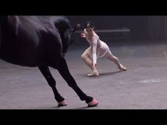 Dance-off with a horse - love this fun commercial from OPI Instinct of Color