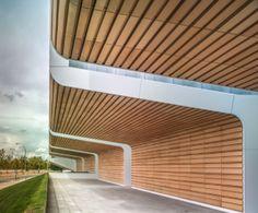 The University Teacher Training College features tile from Ceramica Decorativa.