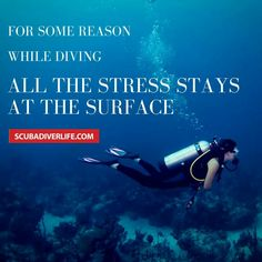 Scuba Diving is just so Peaceful.  Keep Calm & Go Scuba Diving in Dominican…