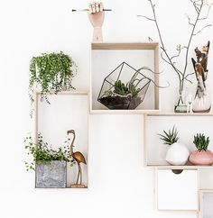 Trend: Urban Jungle in huis - Myhomeshopping - Nice to decorate your wall with Urban Jungle items! - Style and collect - Possible in every room!