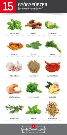 A FŰSZEREK GYÓGYÍTANI IS TUDNAK!  A fűszerek nem csak ízletesek, hanem roppant egészségesek is. Számtalan kedvező hatást fejtenek ki szervezetünkre, ismerd meg, próbáld ki őket. Fűszerezd meg az életedet gyógyfűszerekkel!  Az egészség legyen veled! Herb Garden, Home Remedies, Herbalism, Seeds, Spices, Food And Drink, Health Fitness, Healthy, Mint