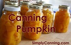 Canning Pumpkin is easy. Can it in cubes and puree when you open the jar. You can only do this with a PRESSURE CANNER. Water bath canning will not work. Canning Tips, Home Canning, Pressure Canning Recipes, Easy Canning, Canning Food Preservation, Preserving Food, Conservation, Canned Food Storage, Canning Jar Storage