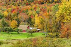 Your Vermont Fall Foliage Headquarters