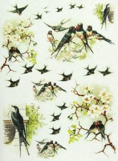 Ricepaper / Decoupage paper, Scrapbooking Sheets Swallows 2