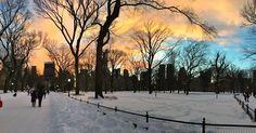 DAY 024 Tonight's sunset was beautiful! #centralpark #snow #sunset #mothernature #beautiful #peaceful #ilovenyc #nyc #manhattan #jonas #Blizzard2016 #blizzard #winterinnyc #winter2016 #jonasinnyc #snowmageddon #frozen #icapture_nyc #ItsAmazingOutThere #jj #pretty #thedayafter by domiix33