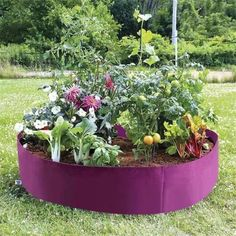 Fabric Raised Bed Planter Bag Plants For Raised Beds, Raised Planter Beds, Raised Garden Beds, Vegetable Planters, Vegetable Boxes, Pot Plants, Garden Soil, Garden Boxes, Planter Garden