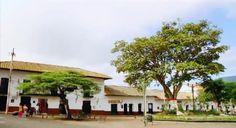 El arbolito - Villa de GUADUAS