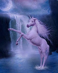 Papier peint / Poster géant en textile sans raccord « Cheval unicorne dans la nuit 2 » 210cm(L) x270cm(H) Atelier WYBO http://www.amazon.fr/dp/B00O542W4Y/ref=cm_sw_r_pi_dp_LWnuub16YQZ3Z