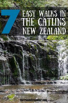 Purakaunui Falls - 7 Easy Walks in The Catlins, New Zealand - The Trusted Traveller